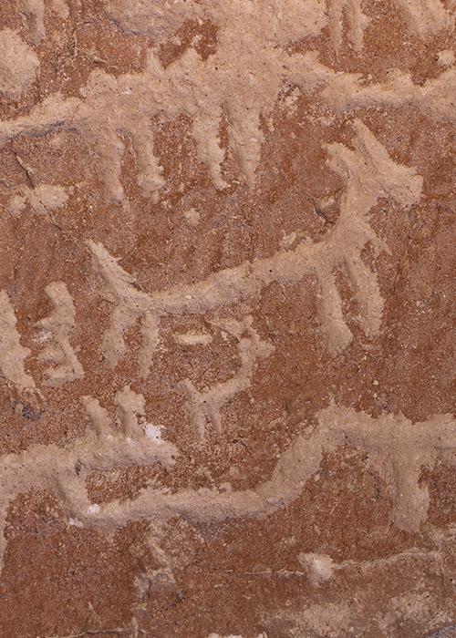 Géoglyphes et Pétropglyphes du Chili