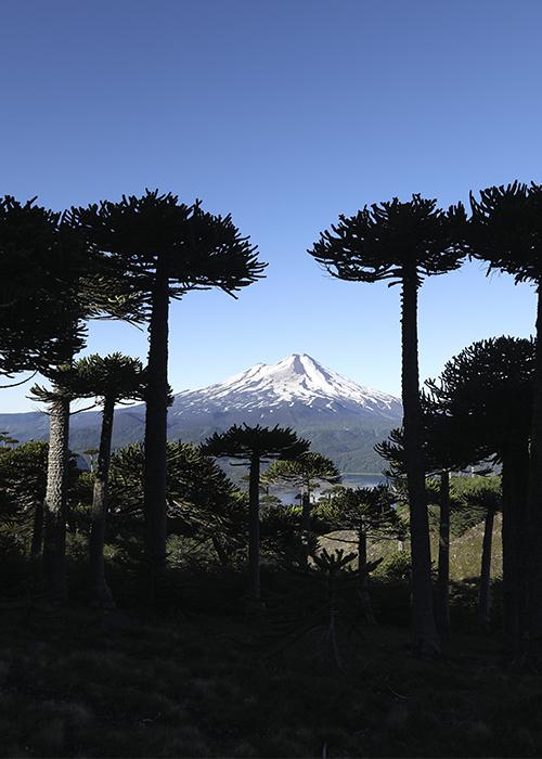 Parcs de Patagonie des Lacs et des Volcans