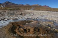 Excursion aux geysers del Tatio