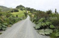 En route pour le parc Chiloé