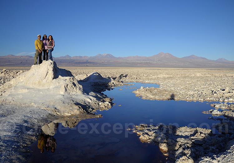 Excursion à la laguna Chaxa, salar d'Atacama