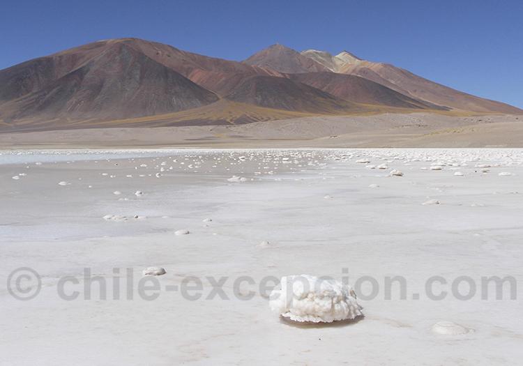 Excursion lagune Tyajto, Atacama