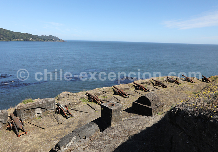 Fort Niebla
