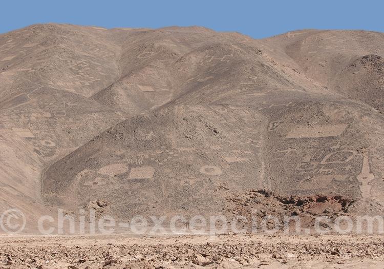 Géoglyphes Los Pintados, région de Tarapaca