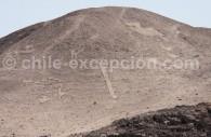Géoglyphe Cerro Sol de Aura