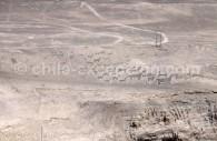 Géoglyphe de Tiliviche