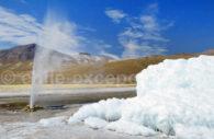 Geyser de Puchuldiza, désert et Altiplano, Chili