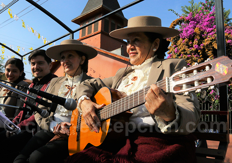 Instruments à corde au Chili