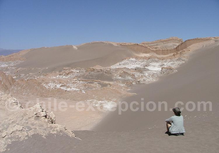 excursion vallée de La Lune, Atacama