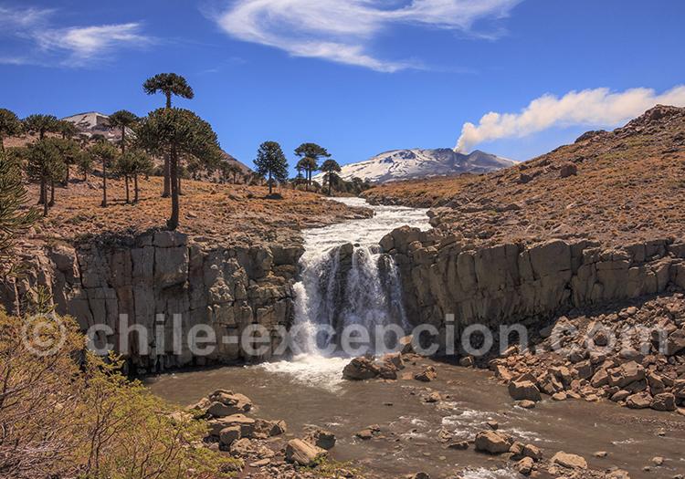 Cascades du rio Agrio, Caviahue