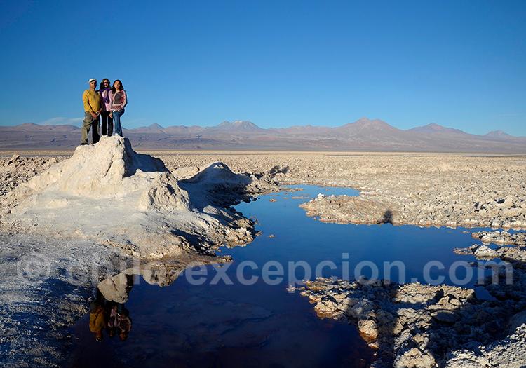 Excursion à la laguna Chaxa