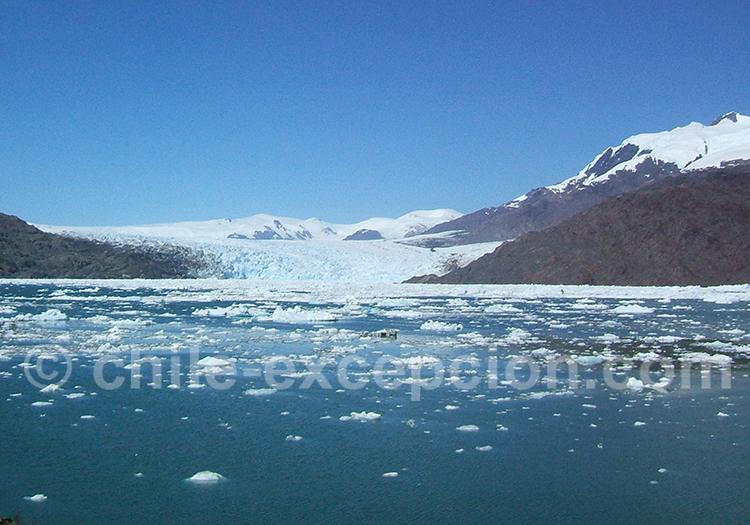 Excursion nautique glacier Montt depuis Caleta Tortel