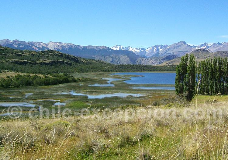 Excursion vallée de Chacabuco
