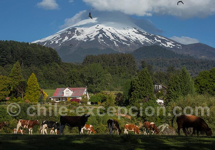 Arrivée au lac Llanquihué et volcan Osorno