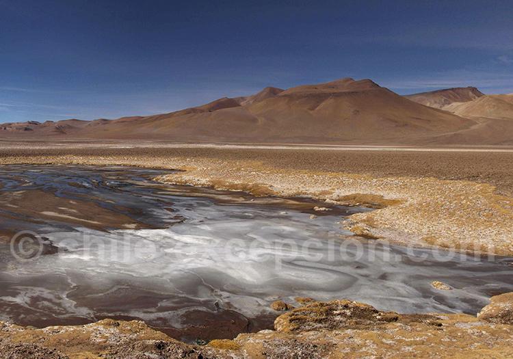 Salar de Quisquiro, Route du Paso de Jama.