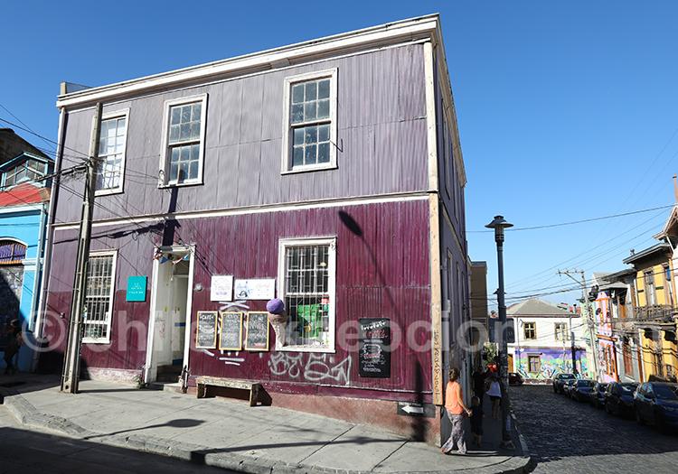 Visite guidée de Valparaiso