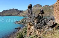 Lac Pehoe, Torres del Paine