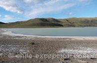 Laguna Amarga, dans la région de Torres del Paine, Chili