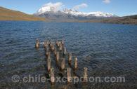 Laguna Azul, Torres del Paine