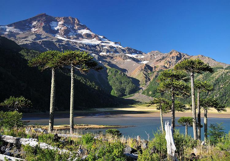 Laguna Blanca - Chile Excepcion