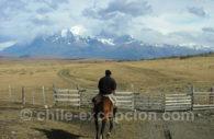 Magallanes, région d'élevage d'ovins