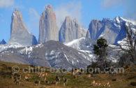 Parc Torres del Paine, excursions et randonnées