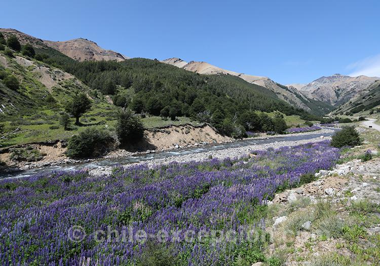 Parc national Cerro Castillo avec l'agence de voyage Chile Excepción