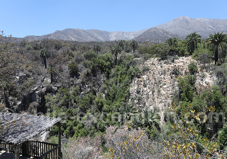 Parc national La Campana