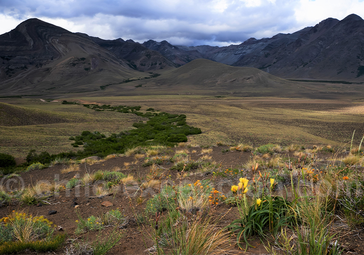 Parc national Laguna del Laja, Antuco