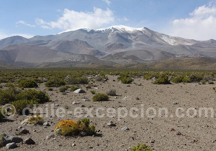 Parc national Volcan Isluga