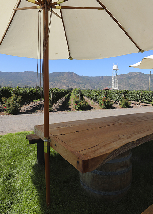 Régions viticoles chiliennes : sur la route du vin chilien
