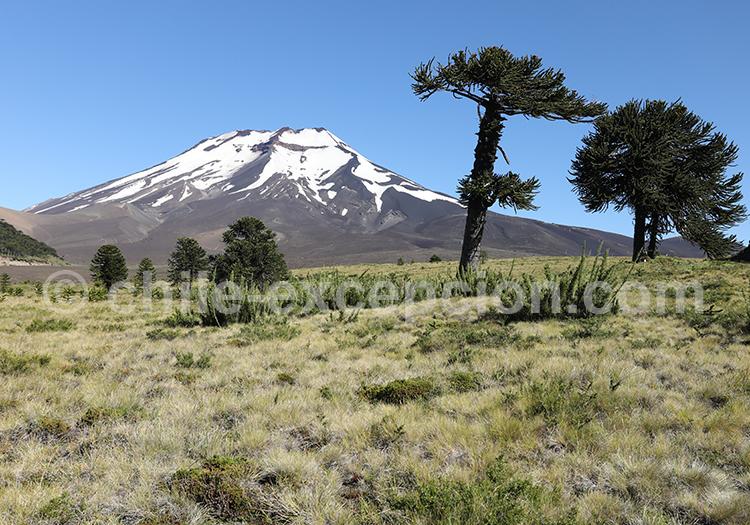 Région Araucanie, Chili