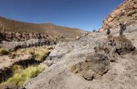 Trek Machuca Rio Grande