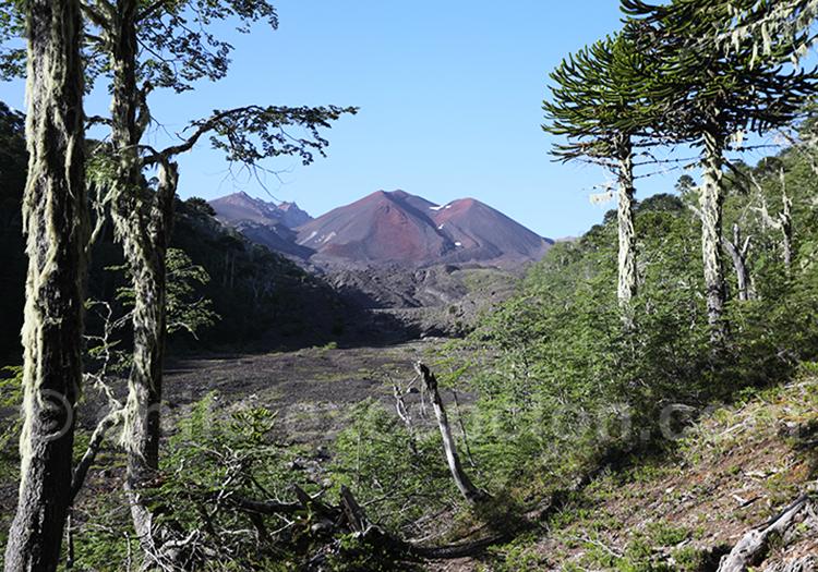 Volcan Sollipulli