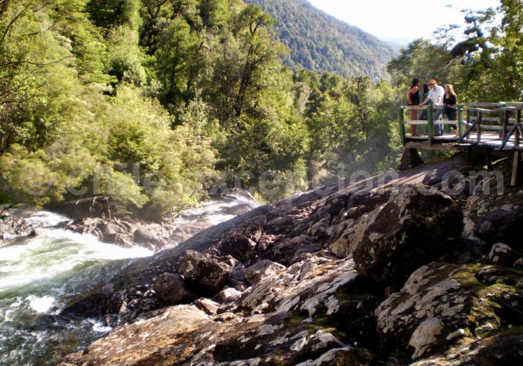 Parc national Alerce Andido