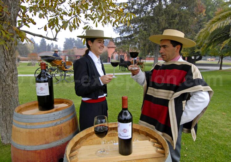 Almaviva Winery, Puente Alto, Santiago, Chili