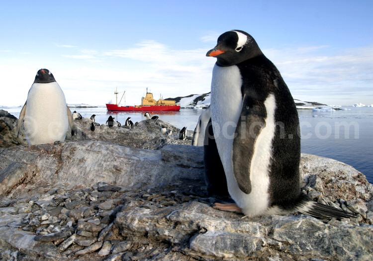 L'Argentine en Antarctique