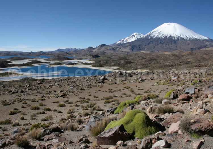 Lagunas de Cotacotani, volcans Parinacota et Pomerape