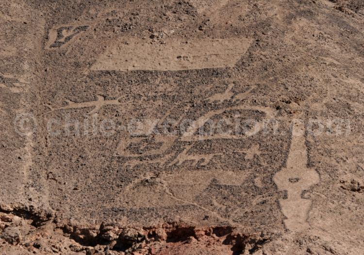 Géoglyphes du Cerro Pintados, Pampa del Tamarugal