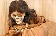 Momies Atacameñas du musée archéologique Gustavo Le Paige, San Pedro de Atacama