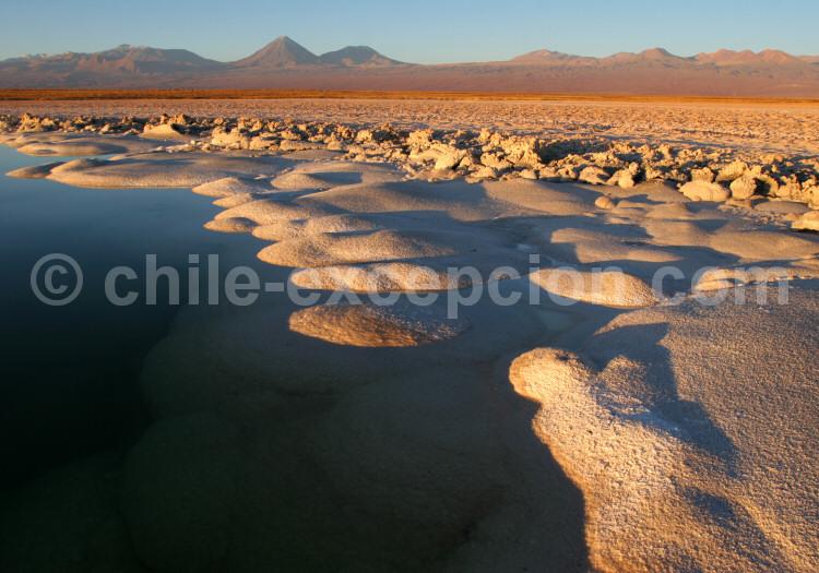 Laguna Cejar, salar d'Atacama