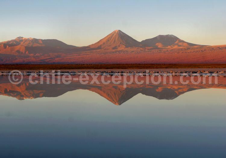 Lagunas Cejar, Salar d'Atacama