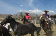 Caballos dans le village de Putaendo, crédit El Anacoreta