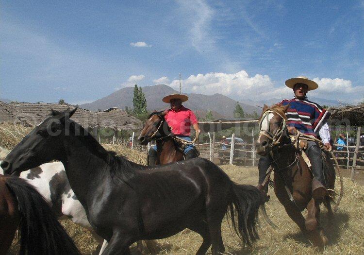 Les Fondas au Chili © El Anacoreta