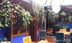 cafe providencia santiago