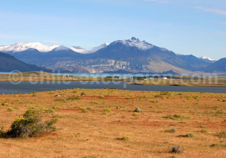 Calafate Patagonie