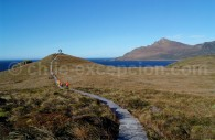 Parc national Cap de Horn. Crédit Alice au pays des merveilles
