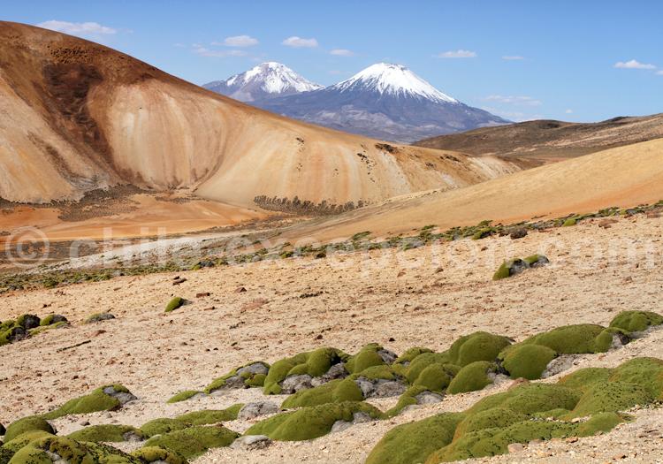 Cerro Milagro