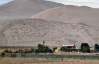 Géoglyphes du Cerro Sagrado, Vallée de Azapa, Arica