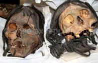 Crânes de momies Chinchorros, Instituto de Alta Investigación in Arica, Chile